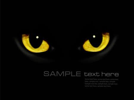 gato negro: Ojos de gato en fondo oscuro Vector noche