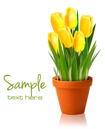Fresh spring yellow flowers  Vector illustration  Vector