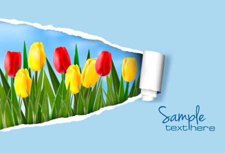 april beautiful: Nature background with ripped paper  Vector illustration