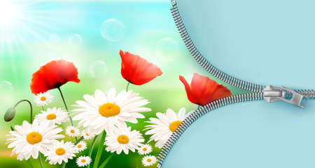 Nature background with summer flowers and open zipper  Vector illustration  Vector