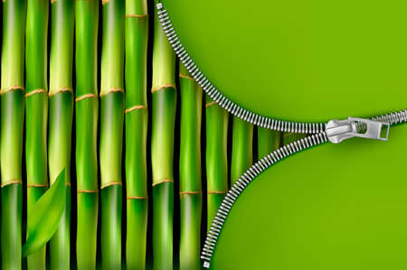 Bamboo background with open zipper  Vector illustration  Illustration