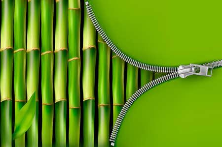 bambu: Fondo de bambú con la ilustración vectorial abierto con cremallera