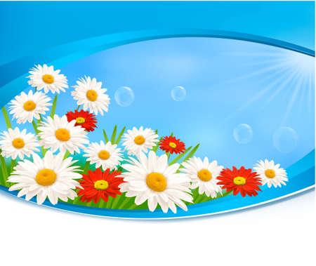 příroda: Příroda na pozadí s letní barevné květy Vector