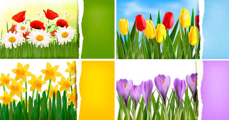 Set of nature backgrounds with colorful spring and summer flowers and ripped paper  Vector Stock Vector - 13617520