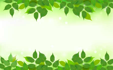 Nature background with green fresh leaves illustration