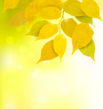 Autumn background with leaves  Stock Vector - 14557625