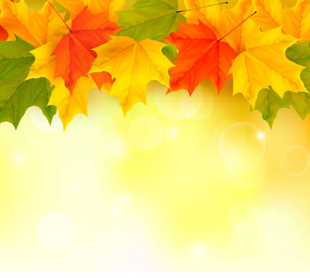 Autumn background with leaves  Back to school  Vector illustration  Vector