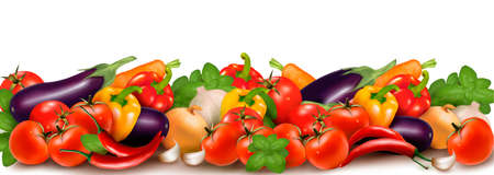 basil leaf: Banner made of fresh colorful vegetables  illustration