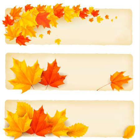 hintergrund herbst: Drei Herbst Banner mit bunten Bl�tter Vektor