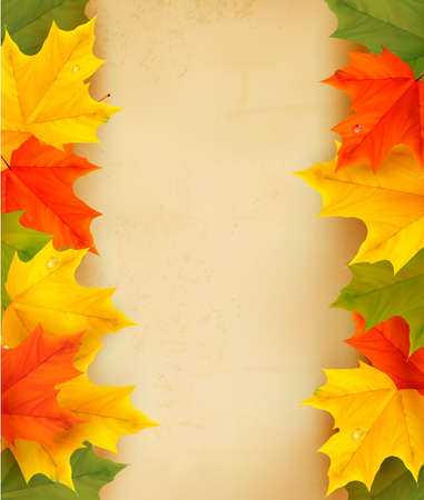 Autumn leaves with old paper  Back to school Vector