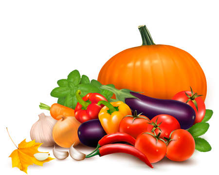 pumpkin tomato: Fresh autumn vegetables with leaves  Healthy Eating  Vector illustration Illustration