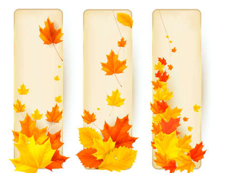 Three autumn banners with colorful leaves in golden frames. Vector. Stock Vector - 15514095