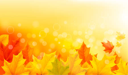 background nature: Autumn background with yellow leaves and hand. Vector illustration.