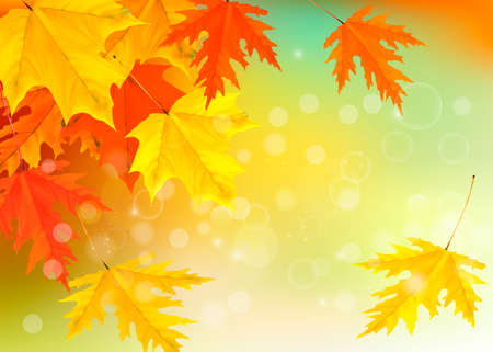 Autumn background with leaves. Back to school. Stock Vector - 15400401