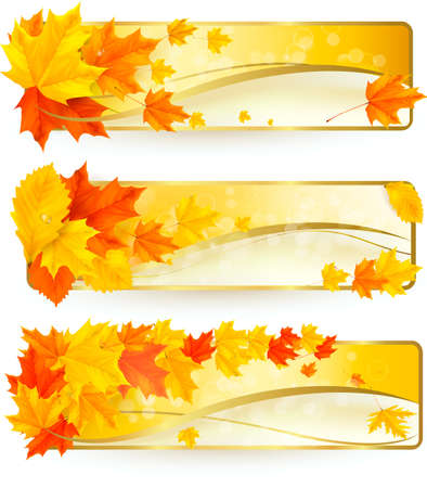 Three autumn banners with colorful leaves in golden frames. Stock Vector - 15400403