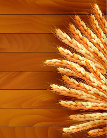 Ears of wheat on wooden background.  Vector