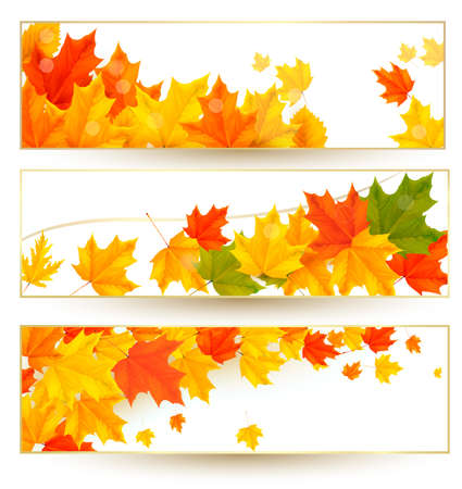Three autumn banners with colorful leaves in golden frames Stock Vector - 15805706