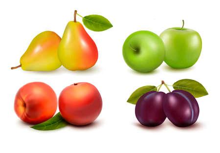 plum: Conjunto de frutas frescas.