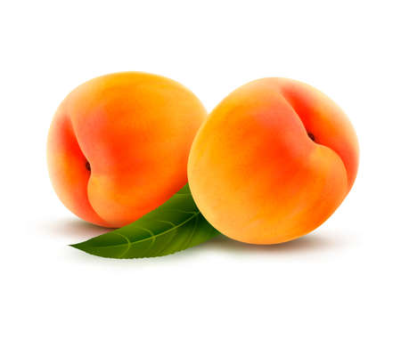 Rpe peach isolated on white.  Vector