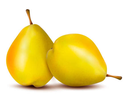 Rpe pear isolated on white. Stock Vector - 16915270