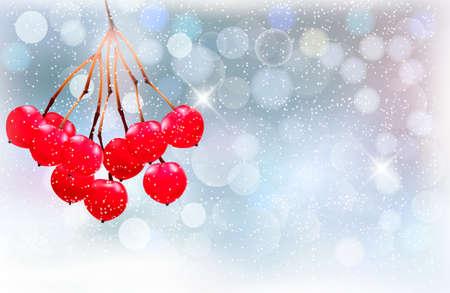 bunchy: Vacaciones de fondo con rama de Navidad con bayas rojas. ilustraci�n.