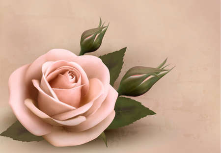 photoalbum: Retro background with beautiful pink rose with buds. Vector illustration.