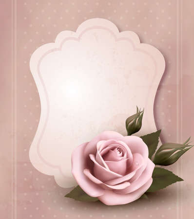 rose petals: Retro greeting card with pink rose
