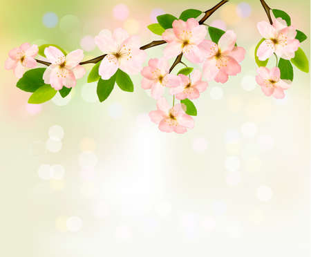 macro flowers: Spring background with blossoming tree brunch with spring flowers. Vector illustration.