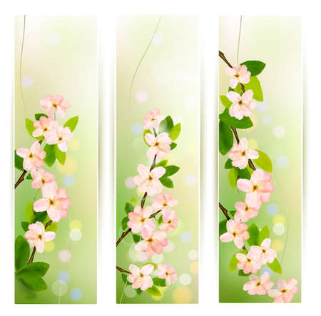 Three nature banners with blossoming tree brunch with spring flowers . Vector illustration. Stock Vector - 17602188
