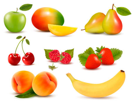 apricot: Big set of different fresh fruit and berries Illustration