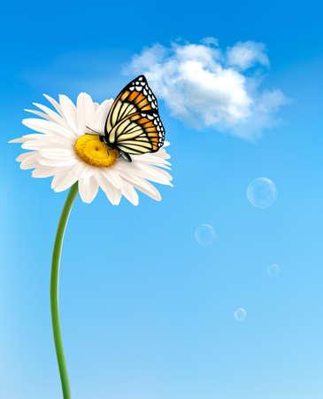 Natura primavera margherita fiore con farfalla. Illustrazione di vettore.