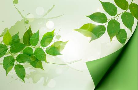 Nature background with green spring leaves. Vector illustration.  Çizim