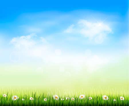 Nature background  illustration Vector