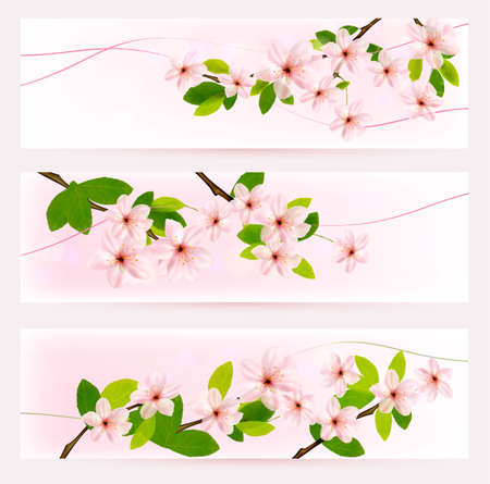 Three spring banners with blossoming tree brunch with spring flowers Stock Vector - 18730238