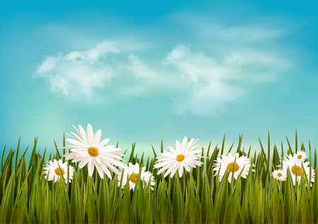 Grass with daisies under blue sky. Retro background. Vector. Vector