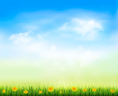 gaze: Summer gaze background with blue sky and a field of dandelions Illustration