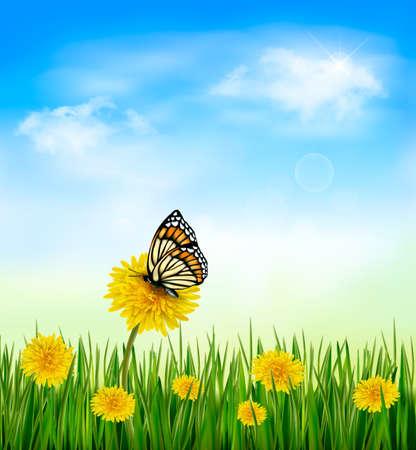 cielos abiertos: Fondo de verano con dientes de león y una mariposa