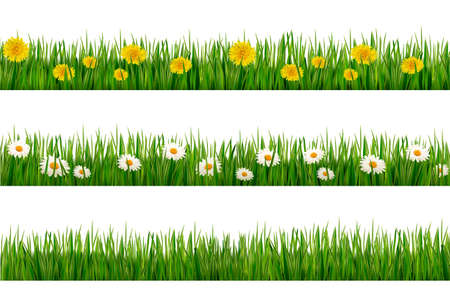 turf flowers: Three nature backgrounds of green grass with dandelions and daisies.