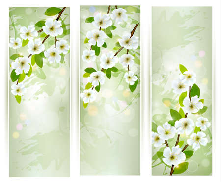 Three banners with blossoming tree branches illustration Stock Vector - 19508046
