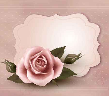 rosa: Retro greeting card with pink rose  Vector illustration