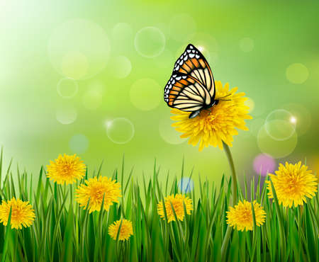 Summer background with dandelions and a butterfly. Vector.  Vector
