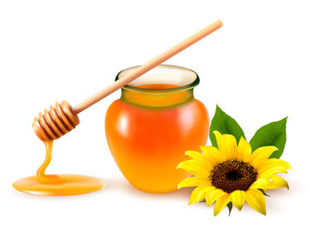 Jar of honey and a dipstick with yellow flower. Vector illustration.  Stock Illustratie