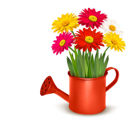 Fresh summer flowers in orange watering can. Vector illustration. Vector