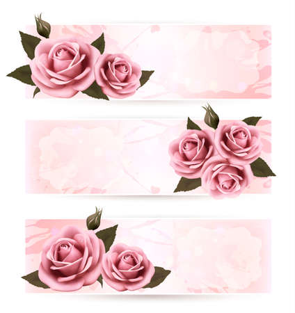 Set of holiday banners with pink beautiful roses.  Vector