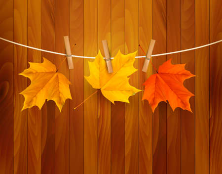 Autumn background with leaves illustration. Stock Vector - 20193250