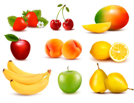 Big group of different fruit. Vector