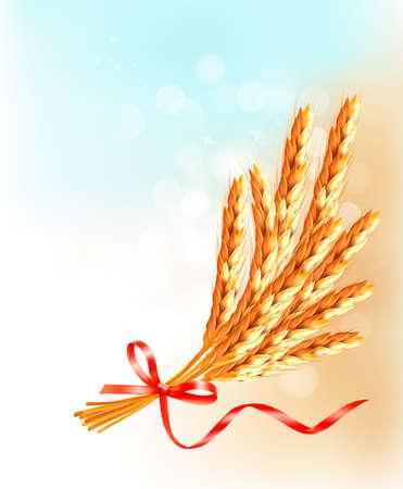 thresh: Espigas de trigo con cinta roja.