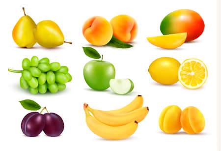 vine pear: Big group of different fruit. Vector. Illustration