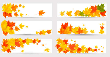 fall leaves border: Set of autumn banners with colorful leaves. Back to school. Vector illustration.