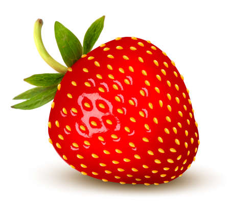 Strawberry. Vector. Stock Vector - 21402383